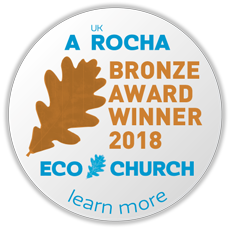 ec award buttons 2018 medium bronze